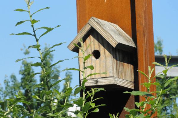 Bird House at Hinge Park in The Village on False Creek