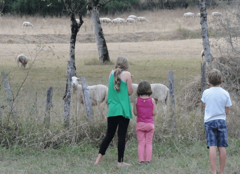 Dordogne with Toddlers and Kids