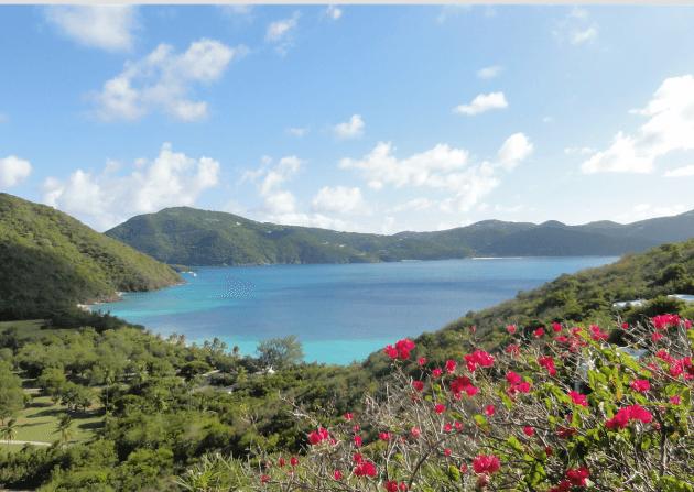 guana island – british virgin islands – with kids
