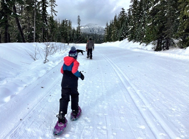 Where to Snowshoe Whistler