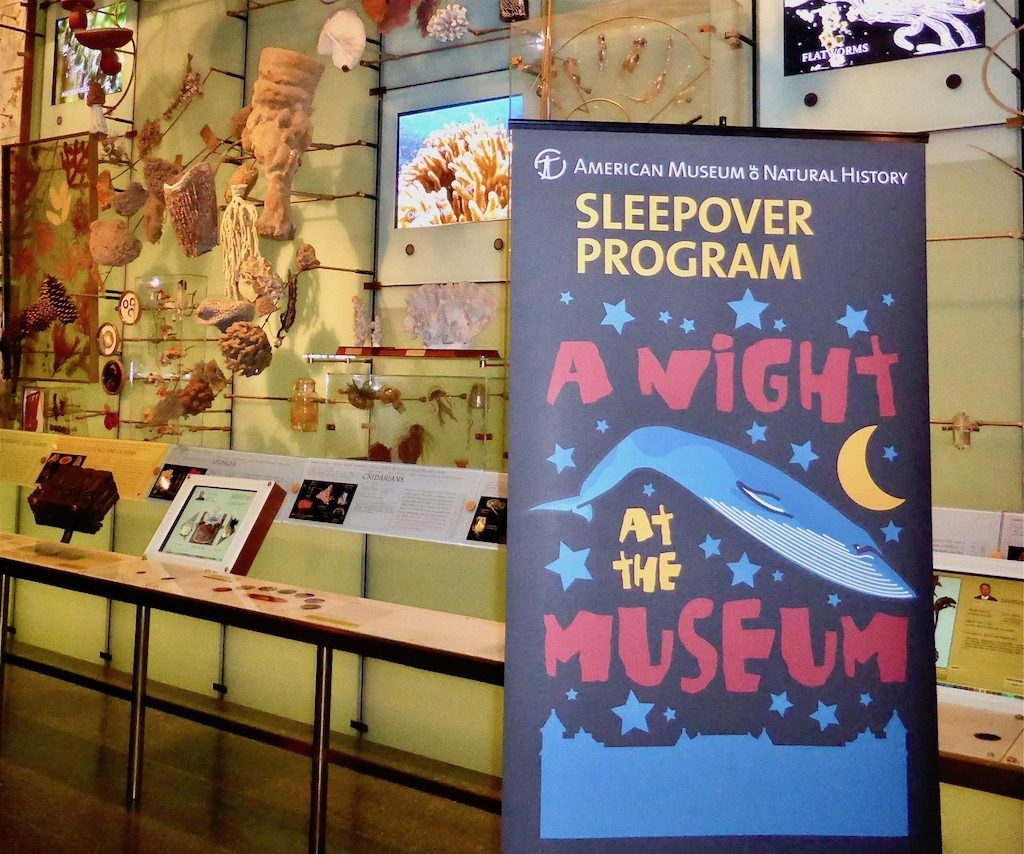 Natural History Museum Sleepover