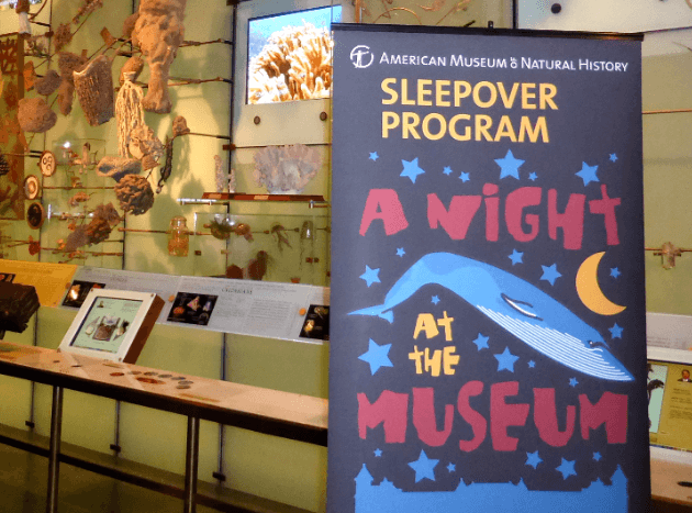 sleepover program museum of natural history nyc
