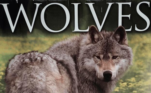 Wildlife Wolf Centre – Golden, BC