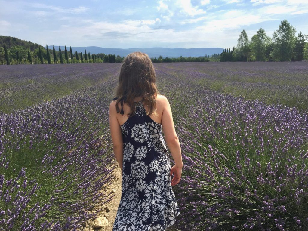 France with Kids - Provence Lavender Fields