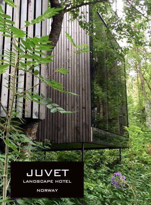 Juvet Landscape Hotel Norway