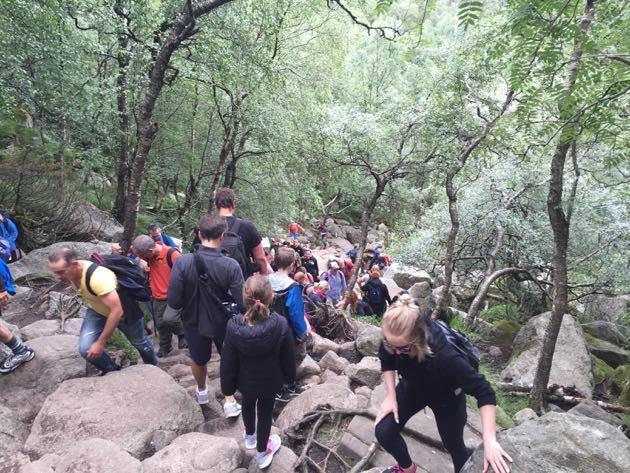 Preikestolen Trail