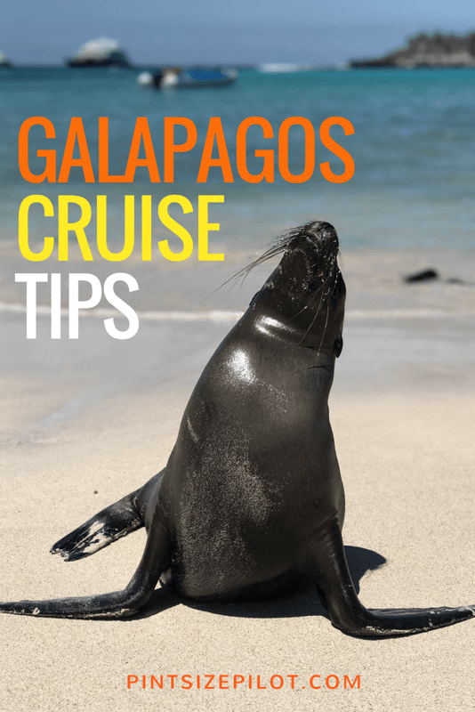 Galapagos Luxury Cruise - Galapagos Islands Family Vacation
