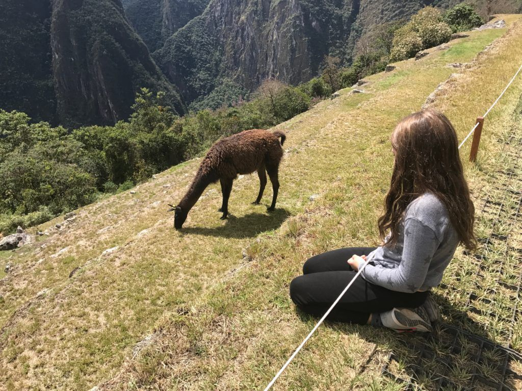 Machu Picchu with Children