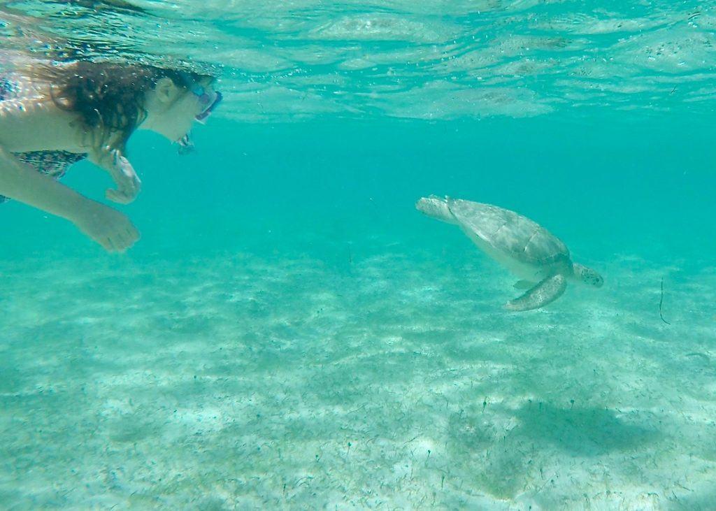 Snorkeling St. Barts - Grand Cul de Sac