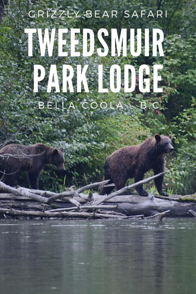 Tweedsmuir Park Lodge – Grizzly Bear Watching Tours